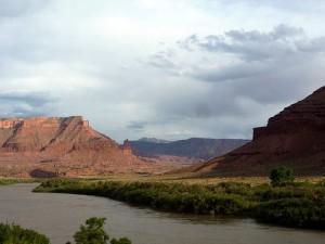 Colorado River Gadsden Riparian Area