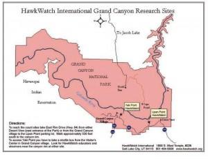 Grand Canyon NP Hawk Points