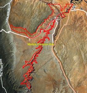Marble Canyon IBA GIS Map