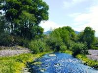 Patagonia Sonoita Creek