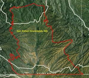 San Rafael Grasslands IBA GIS Map