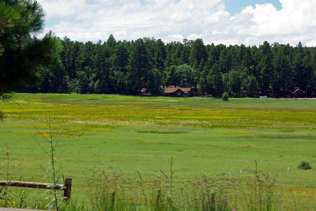 Mormon Lake Training Station photo courtesy of Cocinino National Forest