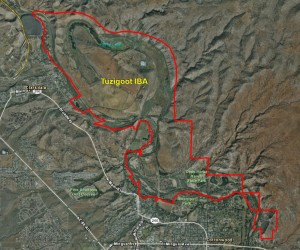 Tuzigoot IBA GIS Map