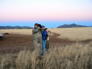 crew looking for short-eared owls