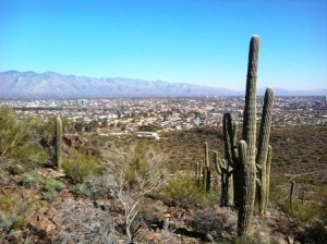 View of Tucson from Tumamoc