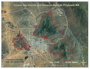 Tucson Sky Islands and Sonoran Uplands Proposed IBA - imagery