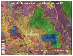 Tucson Sky Islands and Sonoran Uplands Proposed IBA - ownership