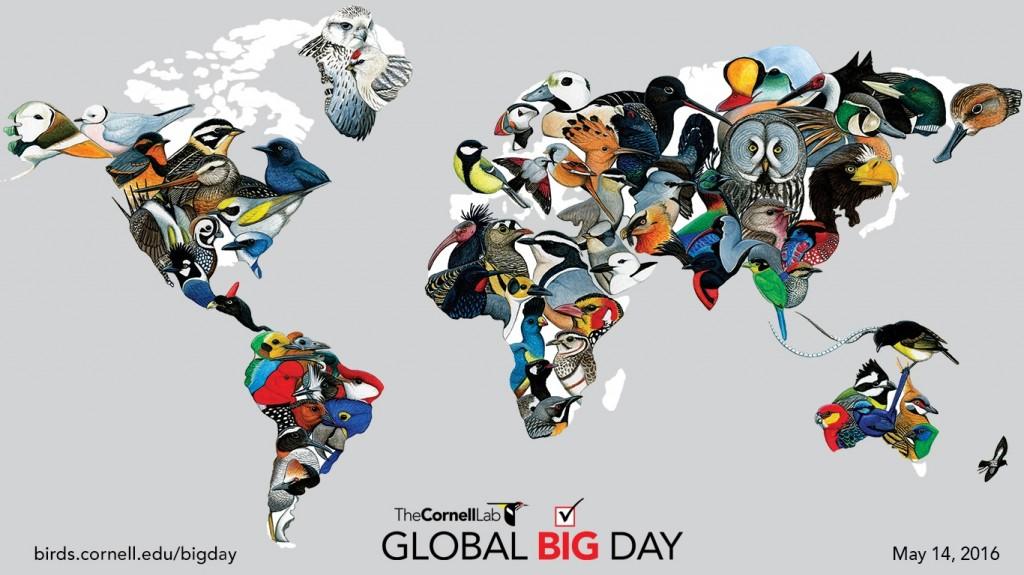 Cornell_Lab_Global_Big_Day_Map-1366x768
