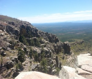 View of the Mogollon Rim by Craig Anderson