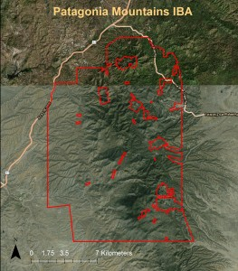 Patagonia Mountains IBA GIS map