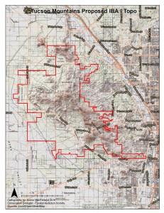 Tucson Mountains Topography