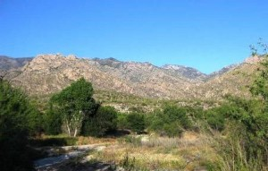 Catalina State Park by Charles Miles.