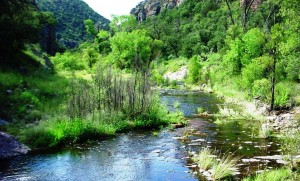 Sycamore Canyon creek by Kendall Kroesen