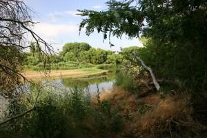Verde River by Sean Dustman
