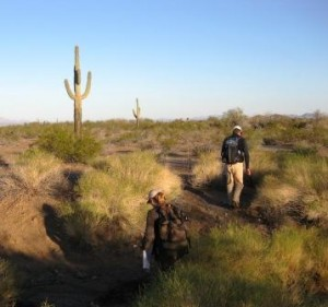 Surveyors in Cabeza Prienta NWR, part of the Desert Borderlands IBA