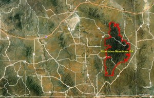 Chiricahua Mountains IBA GIS Map - zoomed out