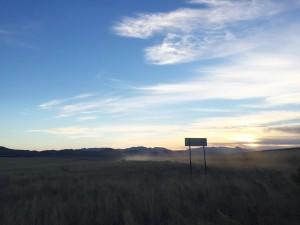 San Rafael Grasslands by Olya Phillips