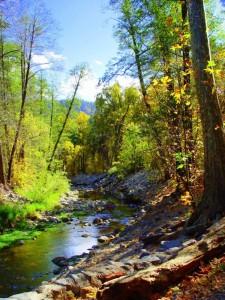 Lower Oak Creek by midiman