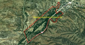 Patagonia-Sonoita Creek TNC Preserve IBA GIS Map