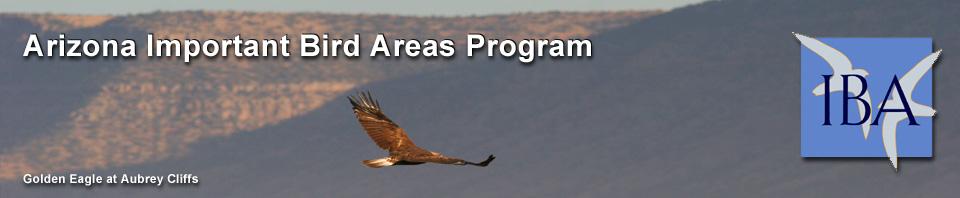Arizona Important Bird Areas Program