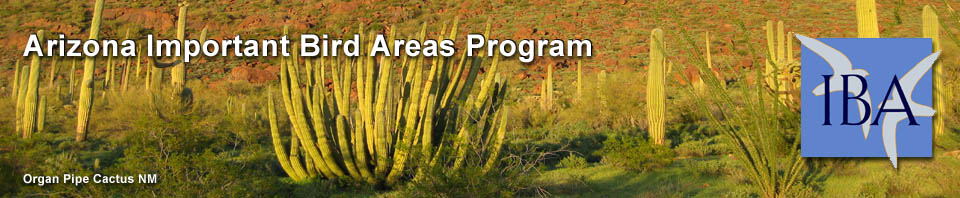 Arizona Important Bird Areas Program