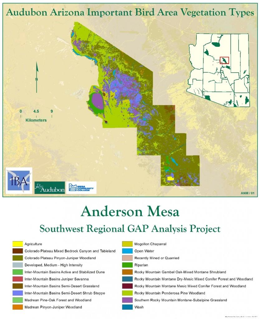 Anderson Mesa IBA Vegetation Analysis
