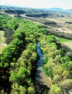 Santa Cruz River S. of Tumacacori, 2, 3-05, john hoffman