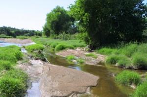 Upper Santa Cruz River