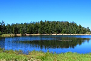 Rigg's Lake at the Top of Mt. Graham in the Pinaleño Mountains