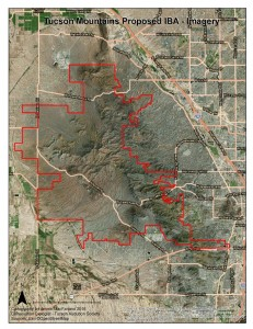 Tucson Mountains Imagery